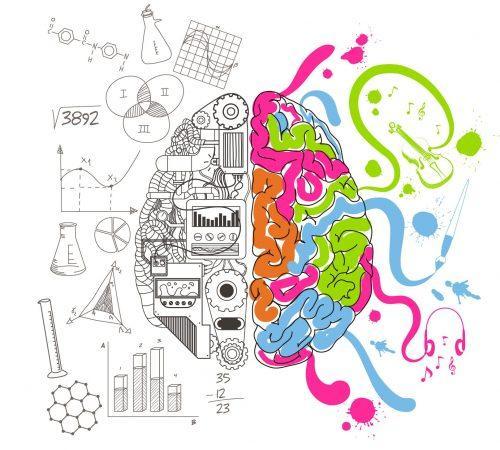 Hemisferios del cerebro racional y creativo. Psicólogo en Madrid